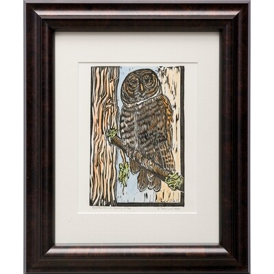 Sylvia Portillo -- Spotted Owl in Spring
