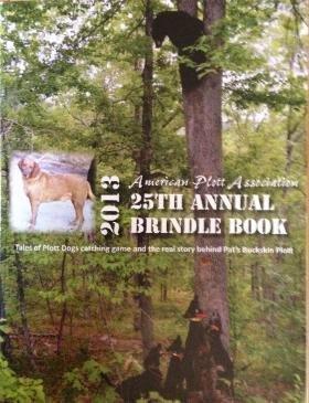 2013 APA Brindle Book