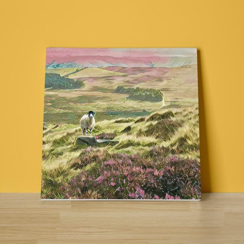 Stanage Sheep Canvas Print