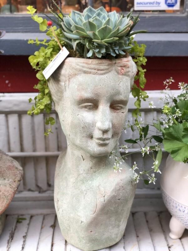 Large Pompeia (wife of Caesar) Succulant Planter