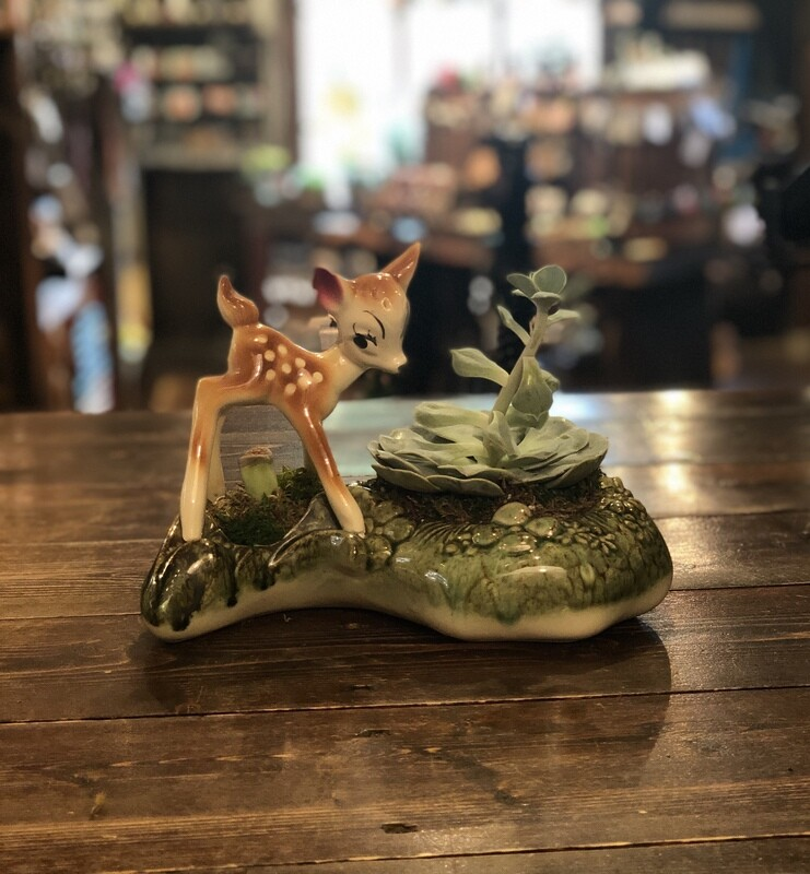 Bambi in the woods succulent planter