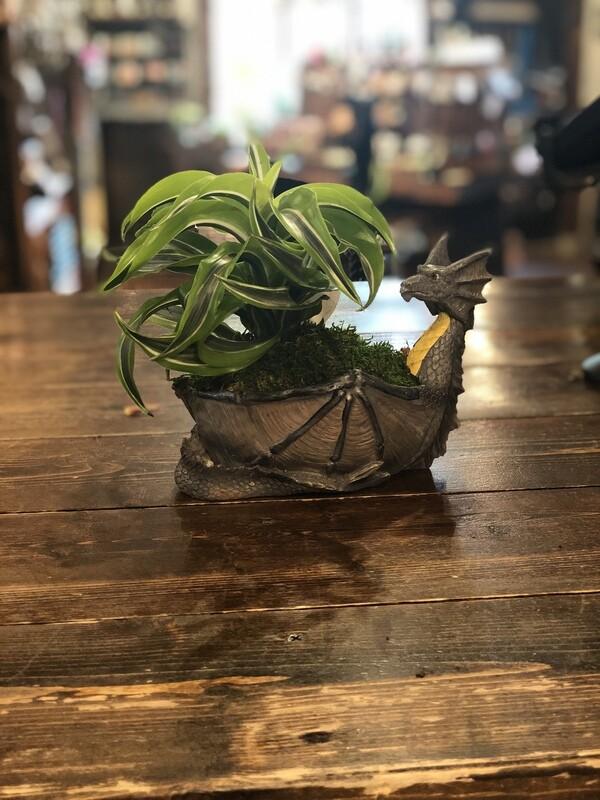 'Khaleesi's Baby' Dragon Planter