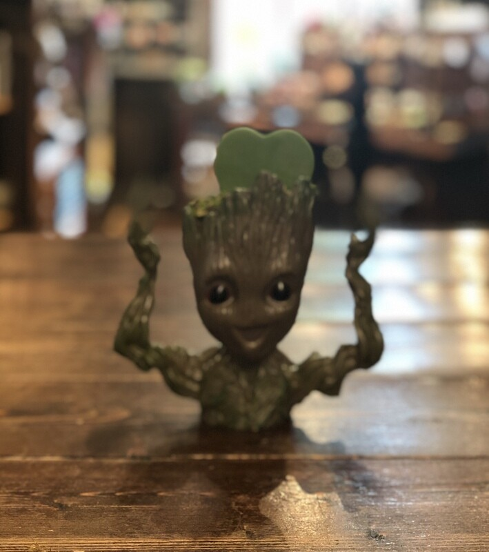 I am Groot with Hoya Succulent