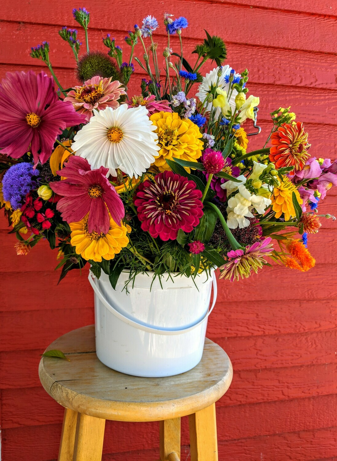 Pick-Your-Own Flower Bucket (Currently Members Only)