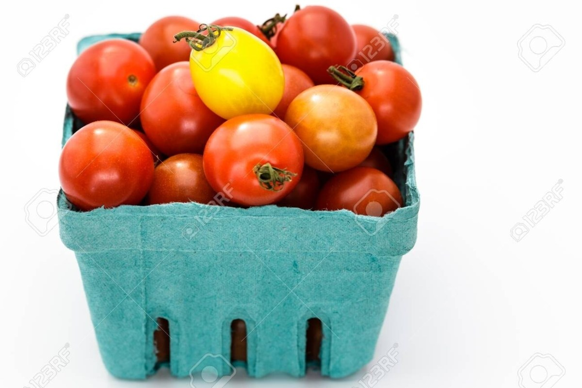 Cherry Tomatoes - pint (just coming into season, still very low supply)