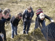 Surveying for Protected Species **NEW** Self-study  Course