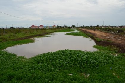 Drainage Canal at Bushlot