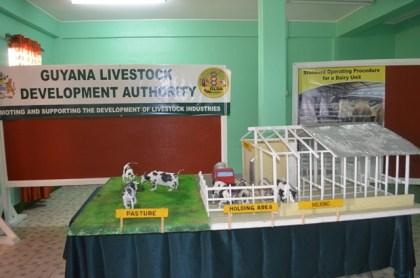 A model dairy farm