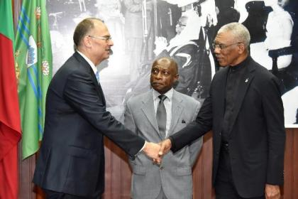 President Granger congratulates the newly accredited Ambassador Kim Højlund Christensen as Minister of Foreign Affairs, Mr. Carl Greenidge looks on.