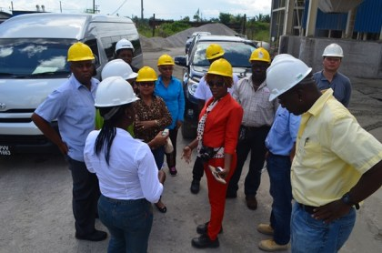Members of the Parliamentary Sectoral Committee on Natural Resources and officials of Bosai before beginning a tour of the company's bauxite plant.
