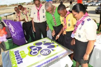 Mr. Ramsey Ali, Ms. Joaquin and other Scouts watch on as President Granger cuts the cake to celebrate the centennial anniversary of Scouting.