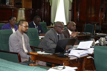 Minister of Citizenship Winston Felix and Minister of Foreign Affairs and Second Vice President , Carl Greenidge at the Parliamentary Sectoral Committee meeting on Foreign Affairs
