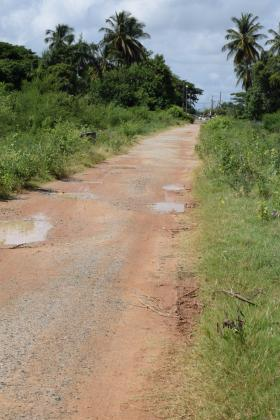 The access road in Paradise Housing Scheme, East Coast Demerara