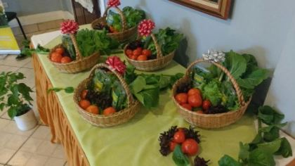 Organic produce that were grown in shade houses