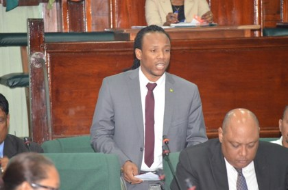 Government Member of Parliament, Jermaine Figueira