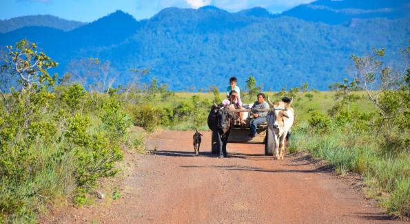 A family returning from the farm lands with a bullcart