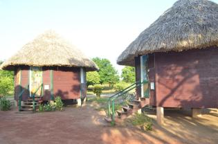 Some of the sleeping quarters at Surama Eco-Lodge