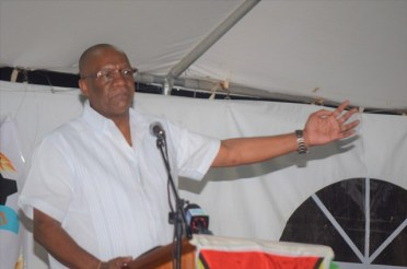Minister of State, Joseph Harmon making a point during his opening address at the R.A.C.E.