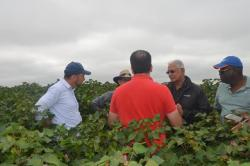Minister Holder in discussion with some of the team while in a Soy Bean farm.