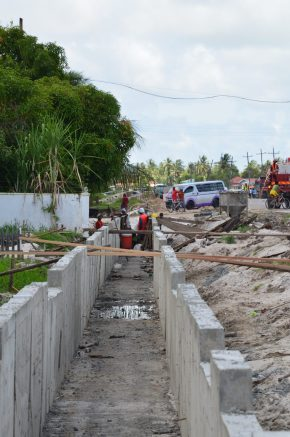 Ongoing drainage works in the vicinity of Lusignan, East Coast of Demerara