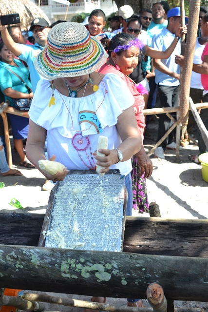 Minister within the Ministry of Indigenous Peoples' Affairs, Valerie Garrido-Lowe grating the cassava bread.