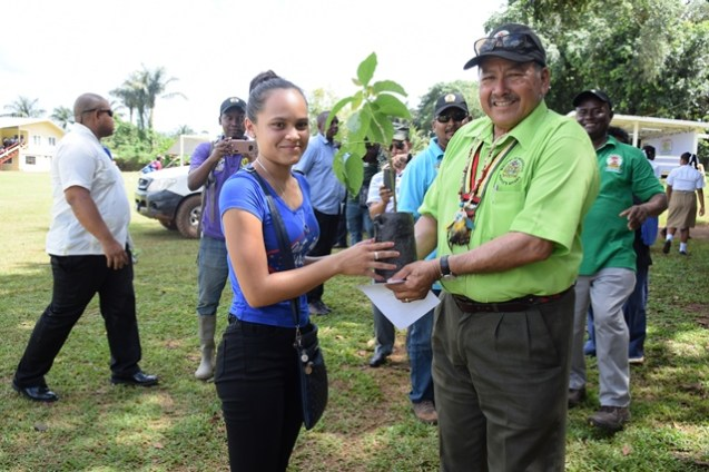 Minister of Indigenous Peoples' Affairs and Fourth Vice President receiving a plant from a young farmer.
