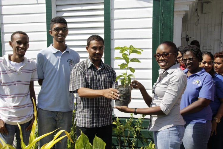Principal Assistant Secretary (General), Mr. Kapildeo Loknauth hands over one of the plants to a MOE staff