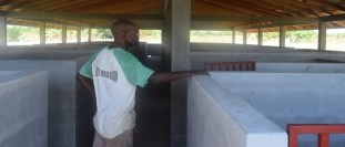 Regional Executive Officer, Ovid Morrison inside the first piggery under construction.