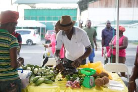 Scenes from the GMC's Market Day