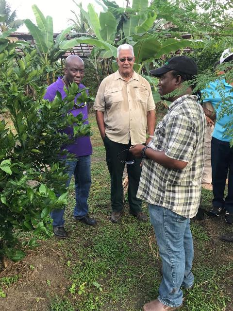 Minister of Agriculture, Noel Holder, Chief Planning Officer of the ministry, George Jervis and Mahdia farmer, Roger Hinds.