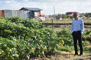 Minister Gaskin taking a better view of Shannon Marshall's kitchen garden.