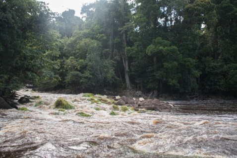 The Great Falls waterfalls.