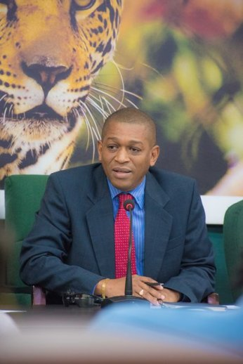 Director of the Department of Energy, Dr. Mark Bynoe.