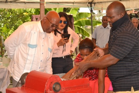 Minister of Finance, Winston Jordan looks on attentively at the demonstration of how the coconut is grated.