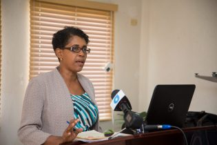 Chief Nursing Officer and Chairperson of the council, Linda Johnson