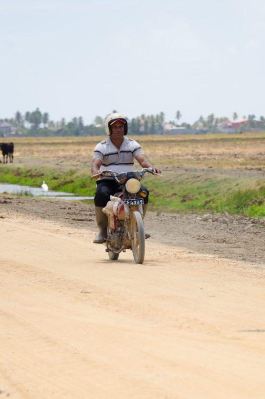 Motorist on Lot 5 Farmers' Road