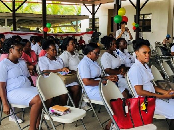 Nurses employed in Region 6.
