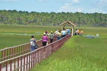 Footbridge in Akawini.