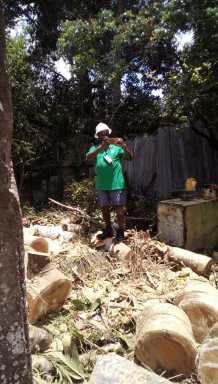 CDC's Captain Salim October assessing the damage
