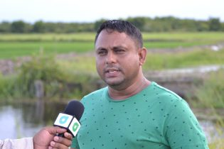Drainage and Irrigation Manager of the MMA/ADA, Mahendranauth Ramjit
