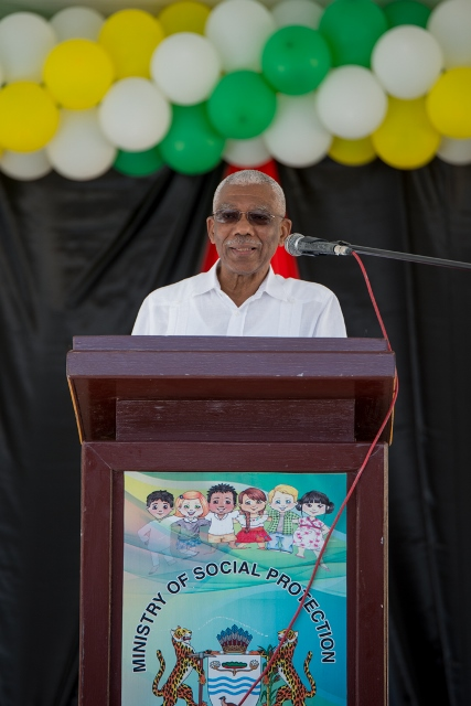 His Excellency President David Granger