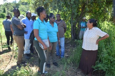 Minister within the Ministry of Agriculture, with responsibility for Rural Affairs, Valerie Adams-Yearwood engaging the farmers.
