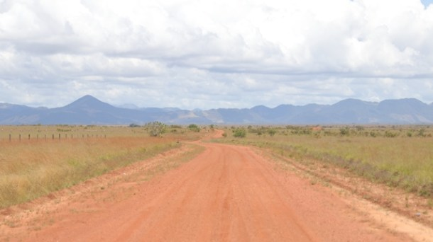 Section of the Linden-Lethem road