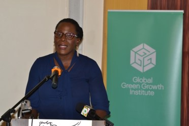 Ndibi Schwiers, Director of the Department of Energy.