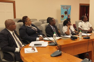 Representatives from Guyana Revenue Authority engage in the session.