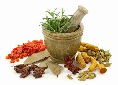 Ayurvedic (Holistic) Medicine Has 5000 Years of Experience Over Western Medicine