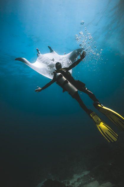 Diving with Mantas Nusa Penida