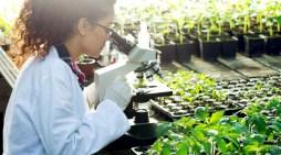 México se prepara para desarrollar medicamentos biotecnológicos