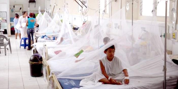 Registran 3 casos de dengue por día