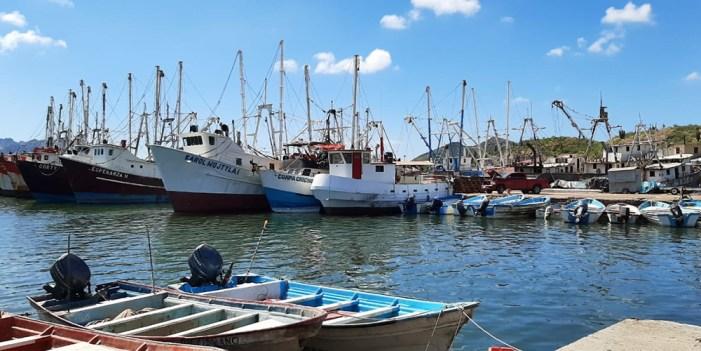 Pescadores de Sonora están listos para temporada camaronera